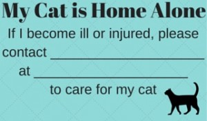 We all worry about our pets. Carry this card with you to let someone know your cat needs attention if you are injured.
