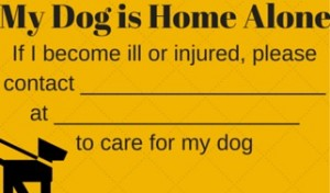 my dog is home alone card free